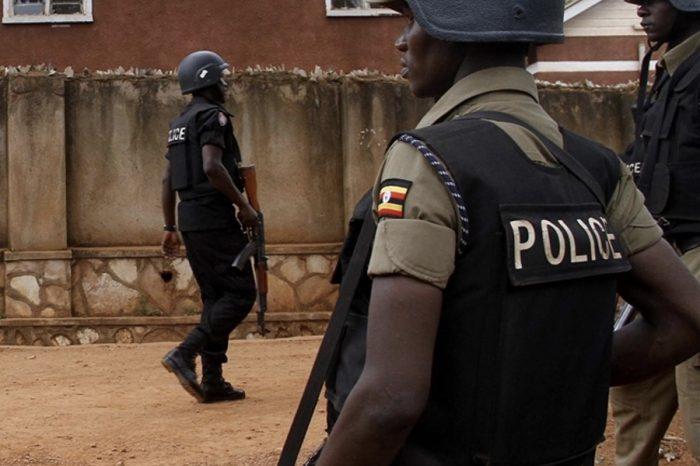 Ugandan police arrest 4 men suspected of killing lions