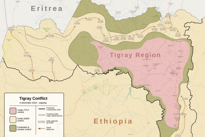 Fixers for foreign journalists detained in Tigray