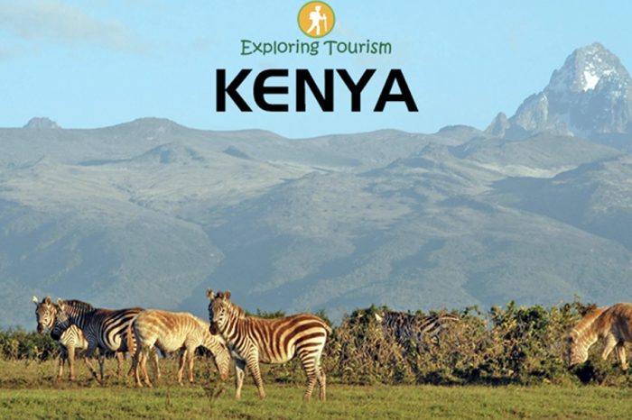 Kenya's tourism revenues fall by 80% in 2020 amid COVID-19