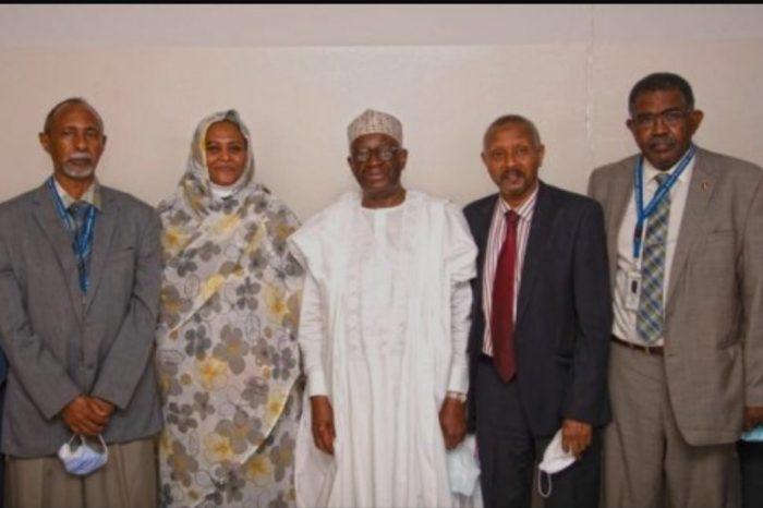 Sudan Foreign minister hold talks in Nigeria, Ghana, over GERD dispute