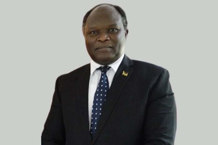 """S. Sudan's  ambassador to Egypt says S. Sudanese teens were molested as a """"result of increased crime & economic hardship"""""""