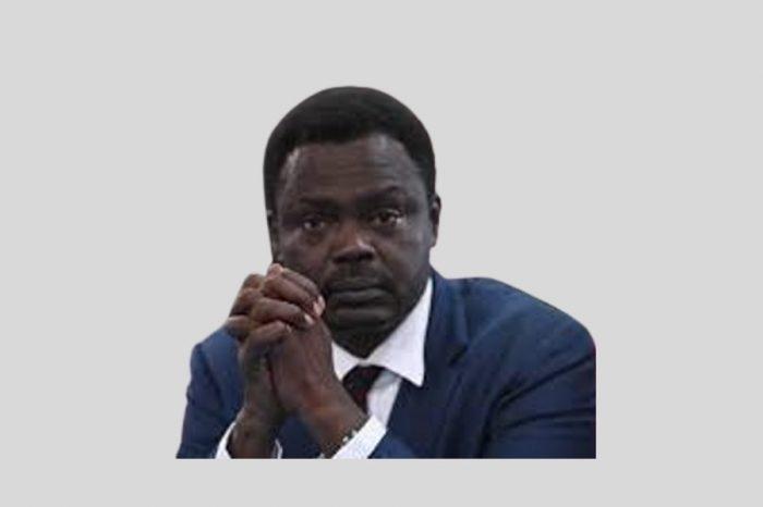 Sudan appoints former rebel leader, Minawi as Darfur governor