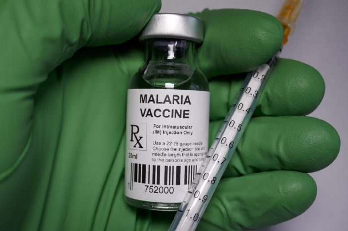 Malaria is far deadlier in Africa than the coronavirus. Why is the vaccine taking so long?