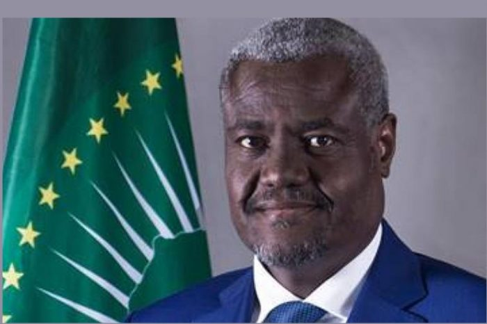 AU chief urges calm after African parliament go gaga