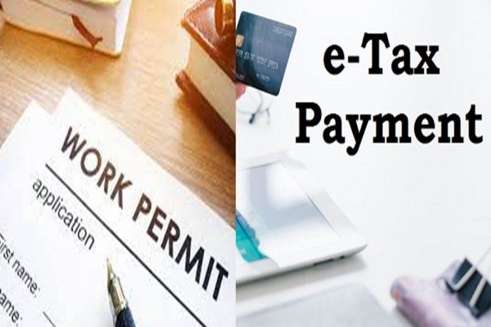 South Sudan Gov't introduces online work permit's issuance and E-tax system
