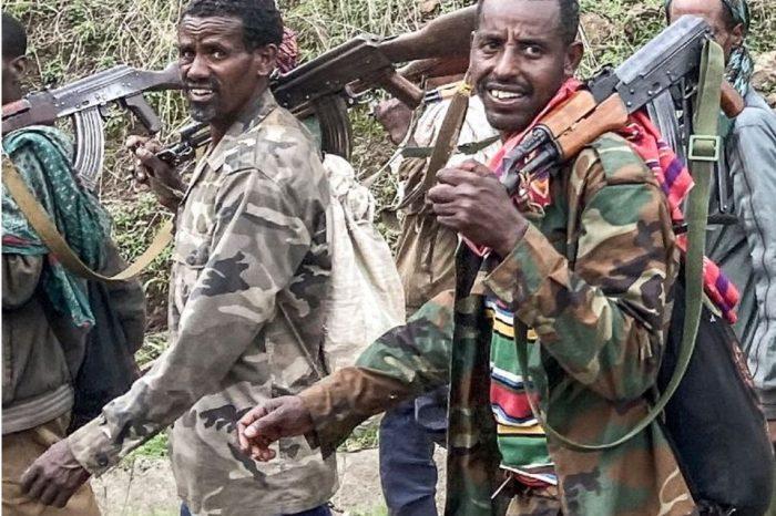 Despite a ceasefire, Ethiopia's Tigray situation worsens.