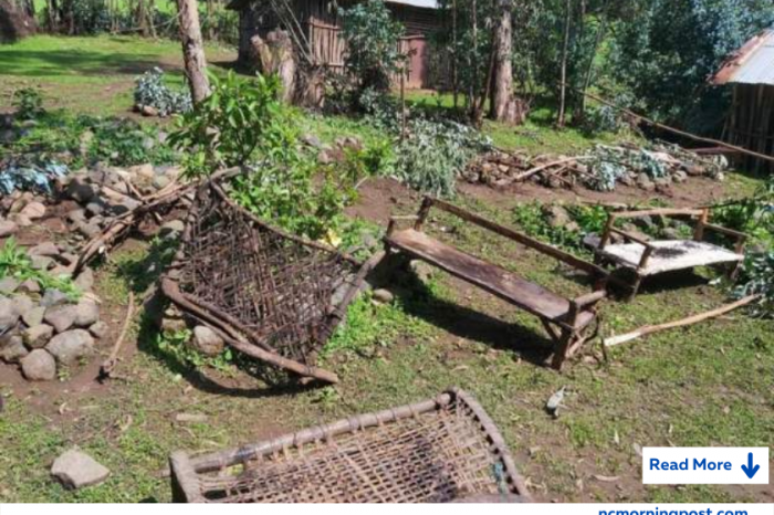 Chena tragedy : TPLF slaughtered at least 100, mass grave discovered