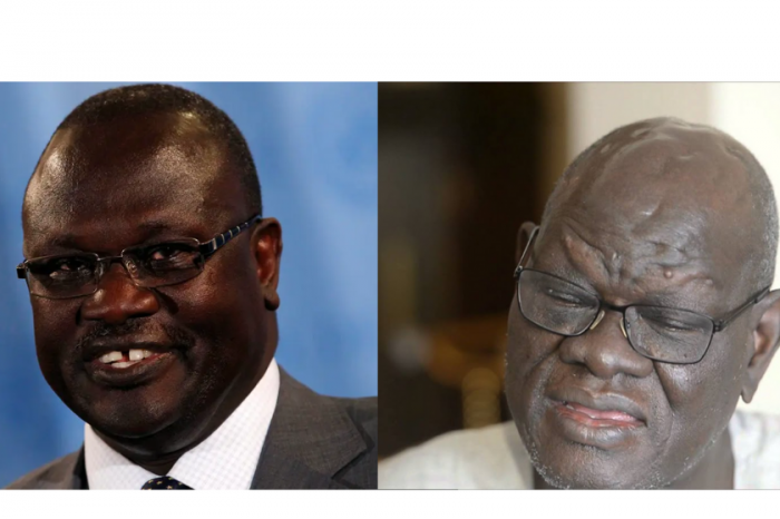 Muhandis resigns from R-JMEC, Nyaba hailed the move, saying Machar no longer interested in complete peace implementation