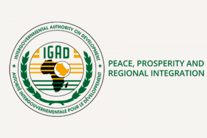 IGAD revived a joint group to address the health and economic implications of the COVID-19 outbreak along the Uganda-South Sudan border.
