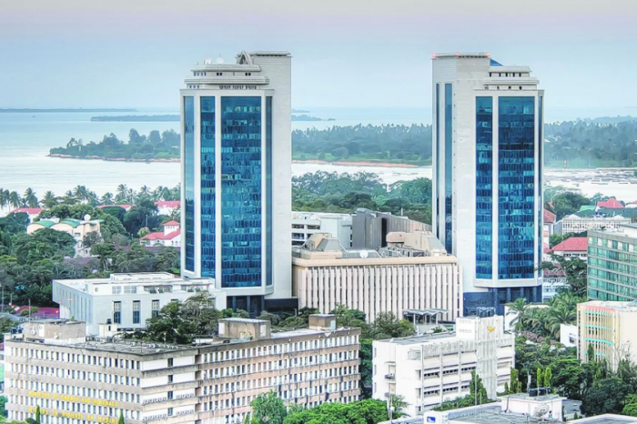 Tanzania's national debt has risen by $3.9 billion in a year, according to a Bank of Tanzania July report.