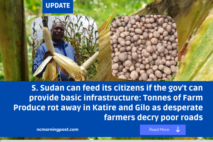 S. Sudan can feed its citizens if the gov't can provide basic infrastructure: Tonnes of Farm Produce rot away in Katire and Gilo as desperate farmers decry poor roads